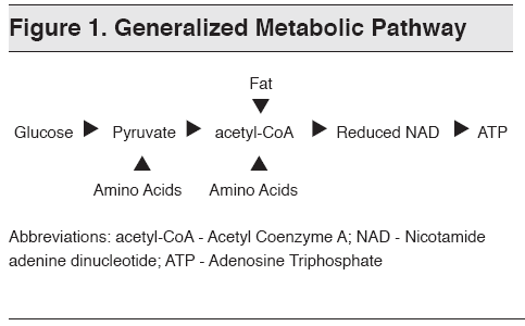 749cd-generalized252520metabolic252520pathway